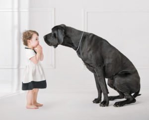 Dog and toddler